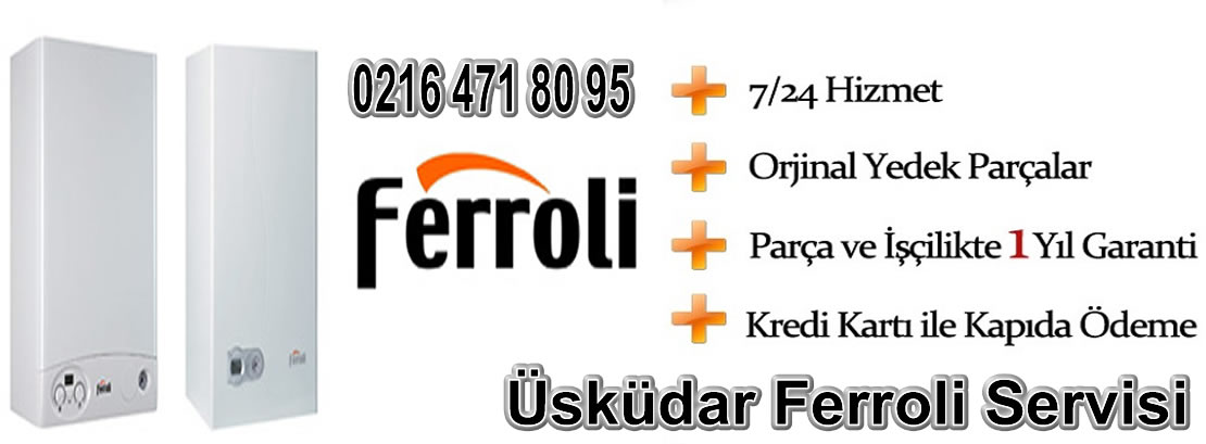 Üsküdar Ferroli Servisi