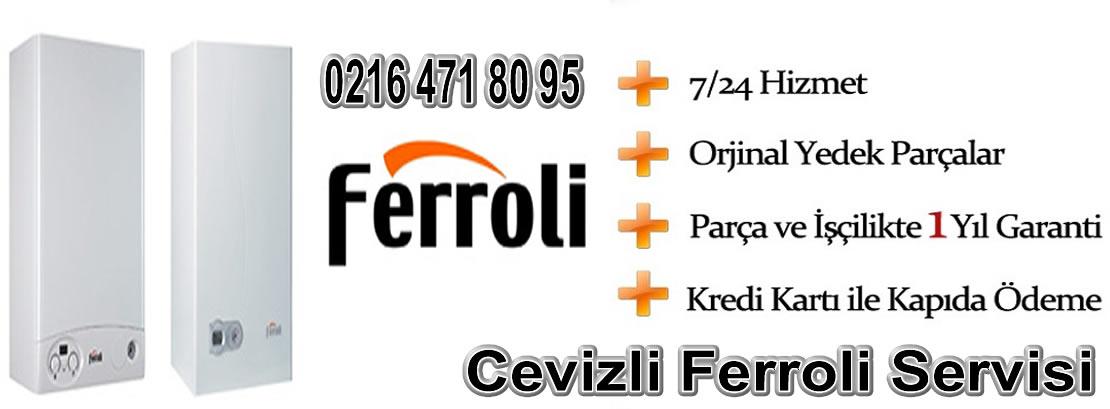 Cevizli Ferroli Servisi