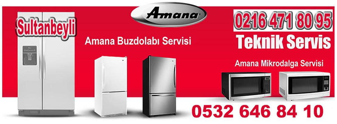Sultanbeyli Amana Servisi