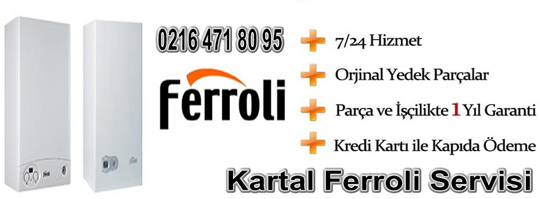 Kartal Ferroli Servisi
