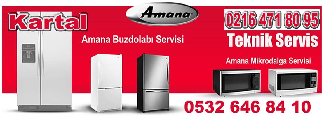 Kartal Amana Servisi