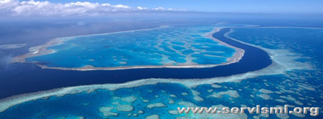 Büyük Bariyer Resif nedir?