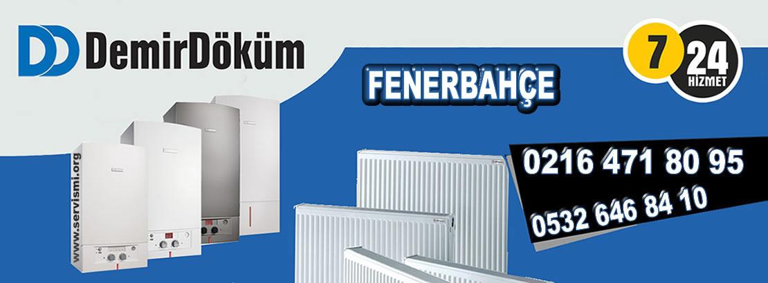 Fenerbahçe Demirdöküm Servisi