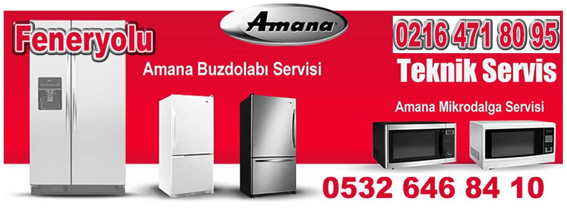 Feneryolu Amana Servisi