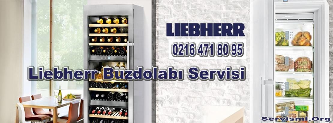 Liebherr Buzdolabı Servisi