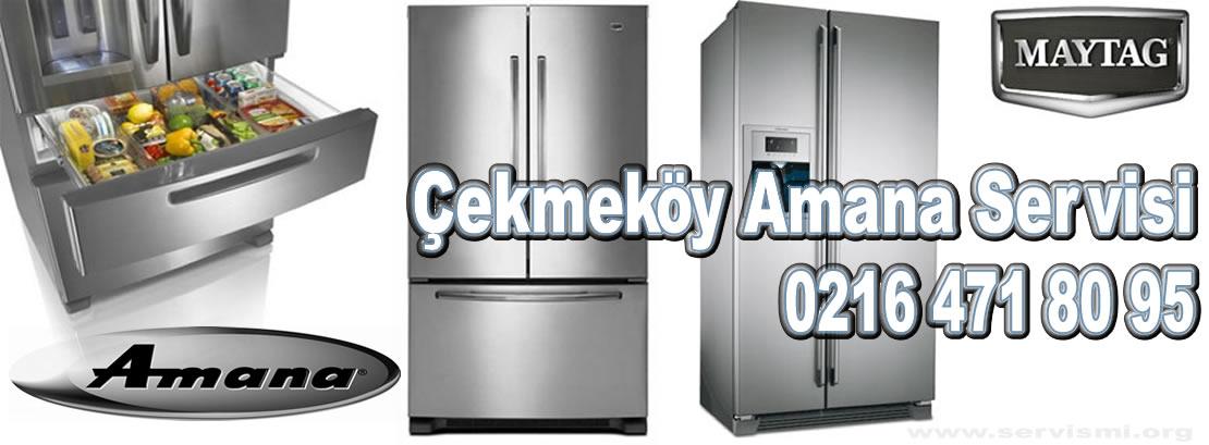 Çekmeköy Amana Servisi