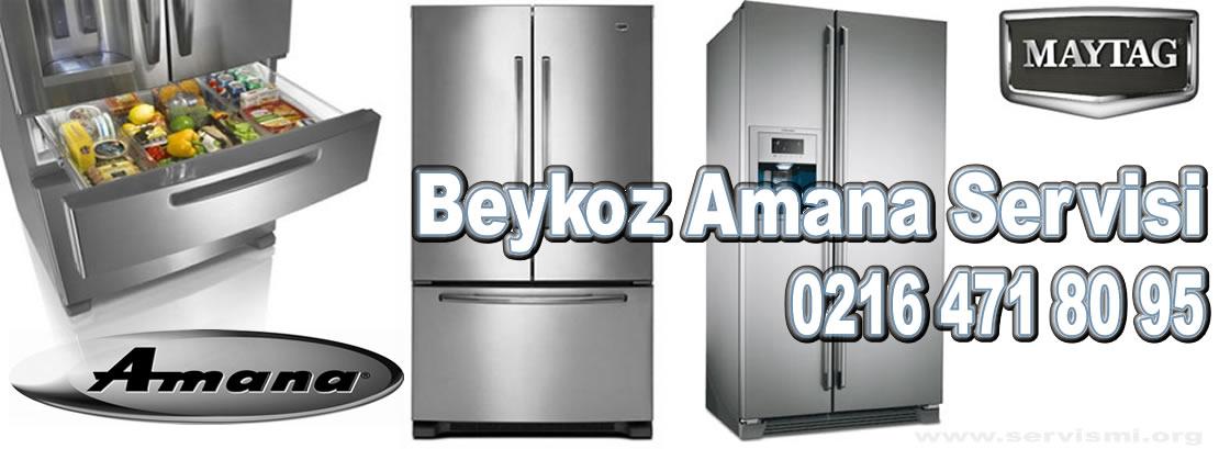 Beykoz Amana Servisi