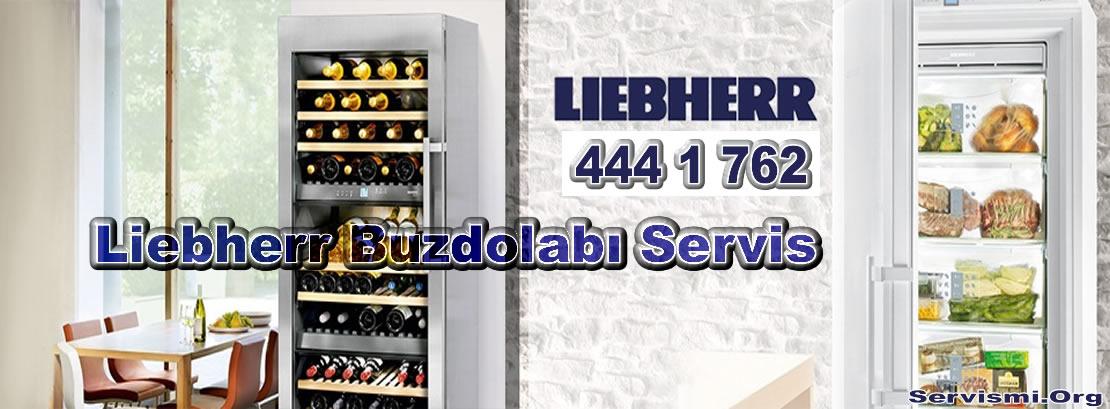 Liebherr Buzdolabı Servis