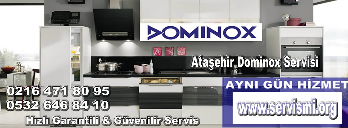 Ataşehir Dominox Servisi