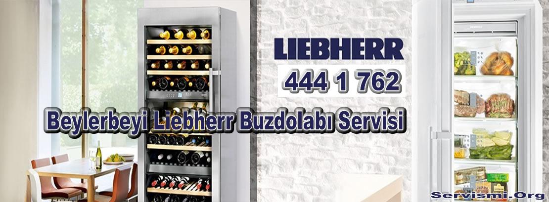 Beylerbeyi Liebherr Servisi