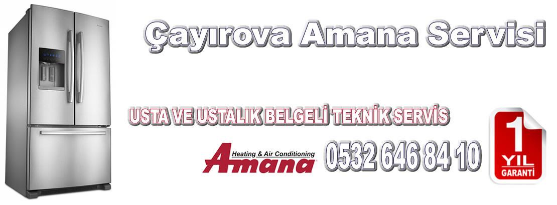 Çayırova Amana Servisi