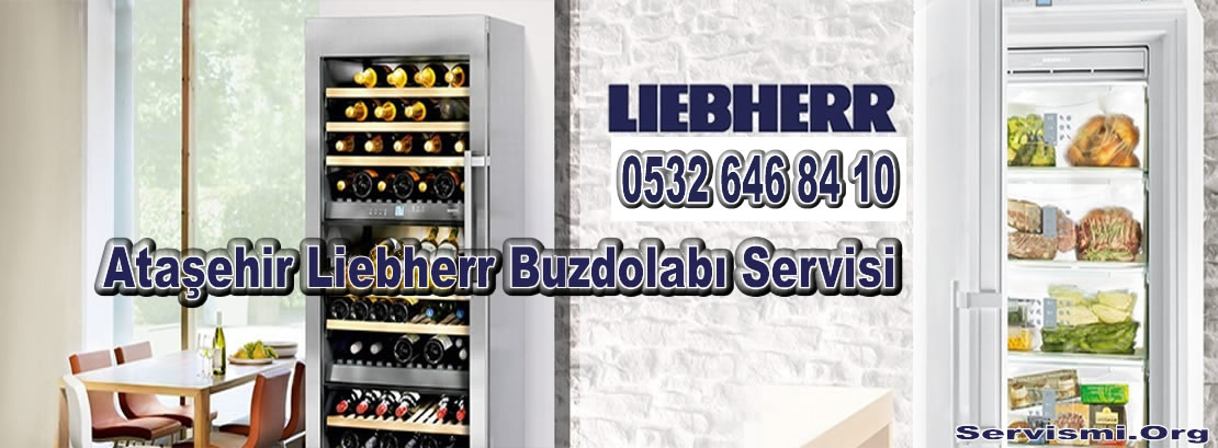 Ataşehir Liebherr Servisi