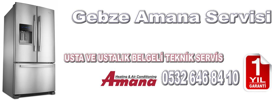 Gebze Amana Servisi