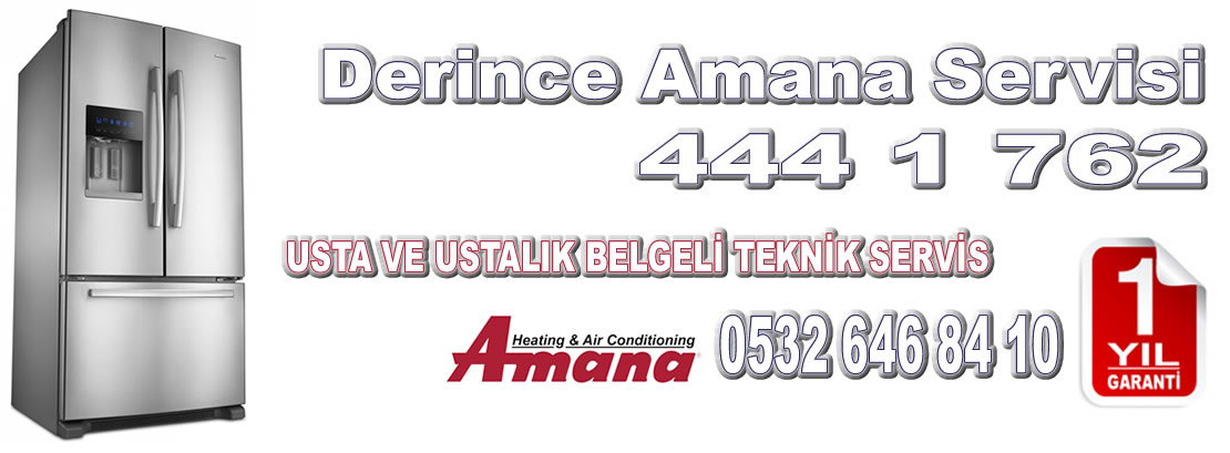 Derince Amana Servisi
