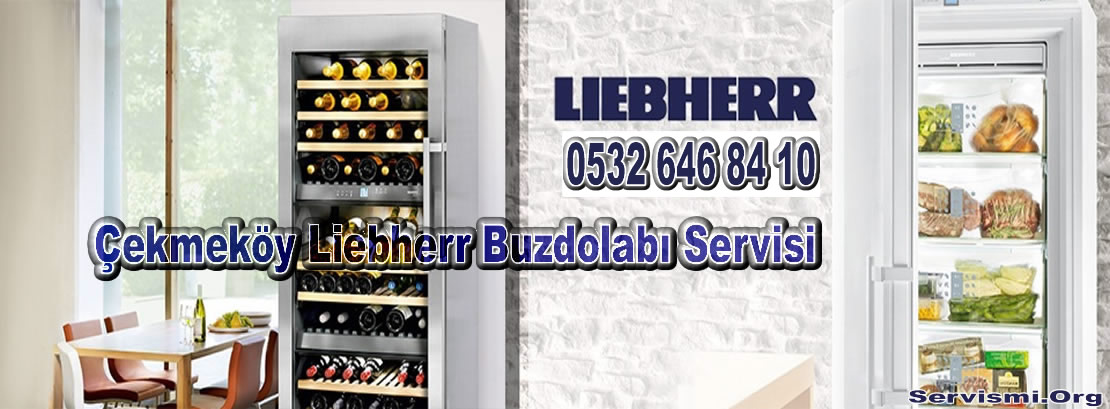 Çekmeköy Liebherr Servisi