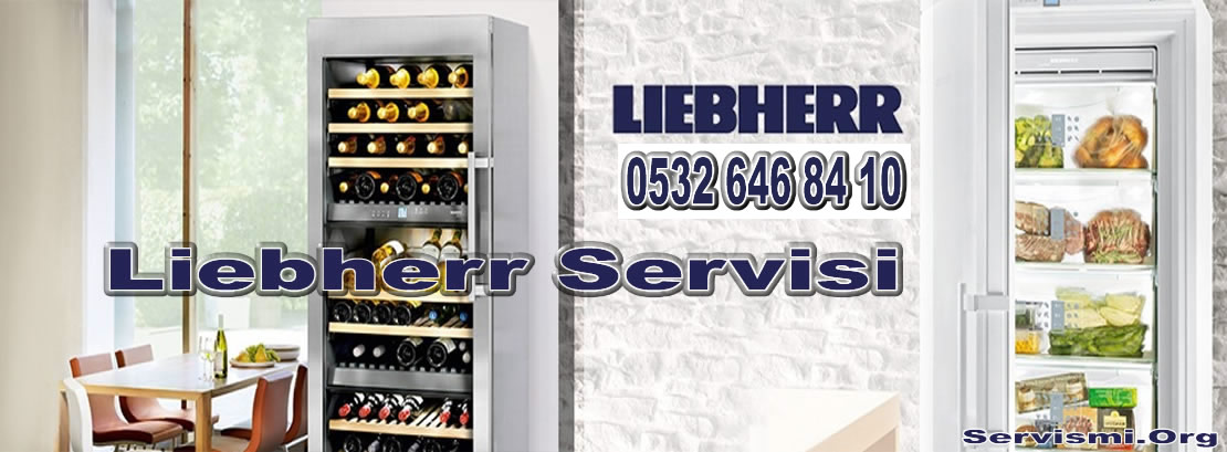 Liebherr Servisi