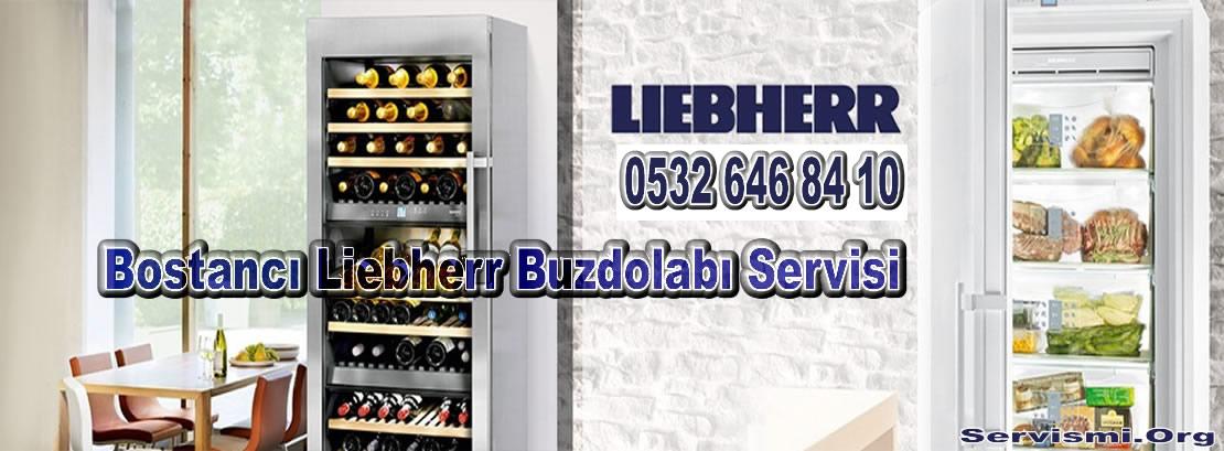 Bostancı Liebherr Servisi