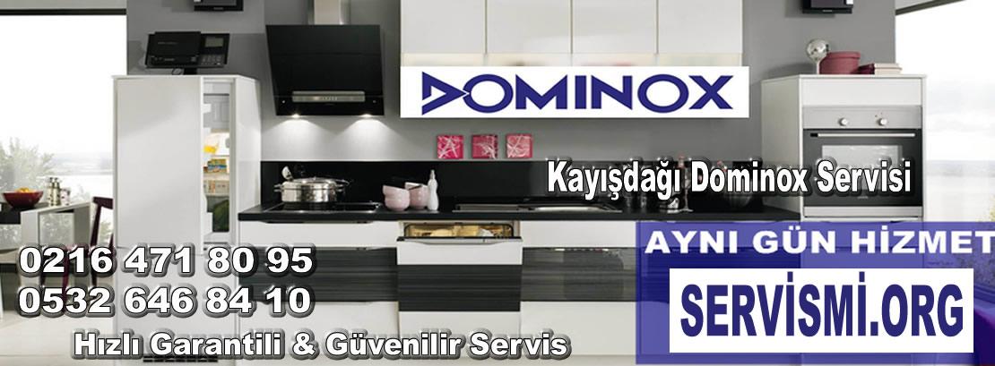 Kayışdağı Dominox Servisi