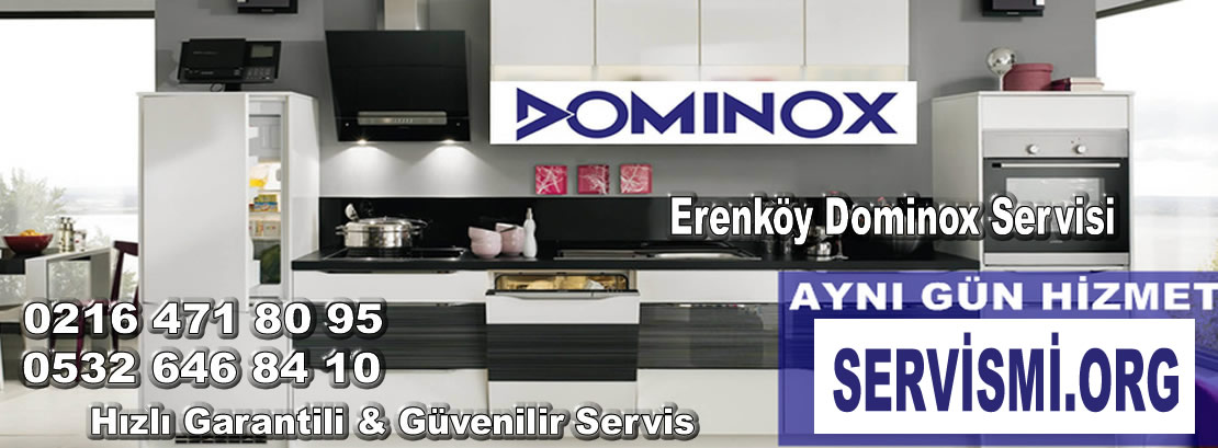 Erenköy Dominox Servisi
