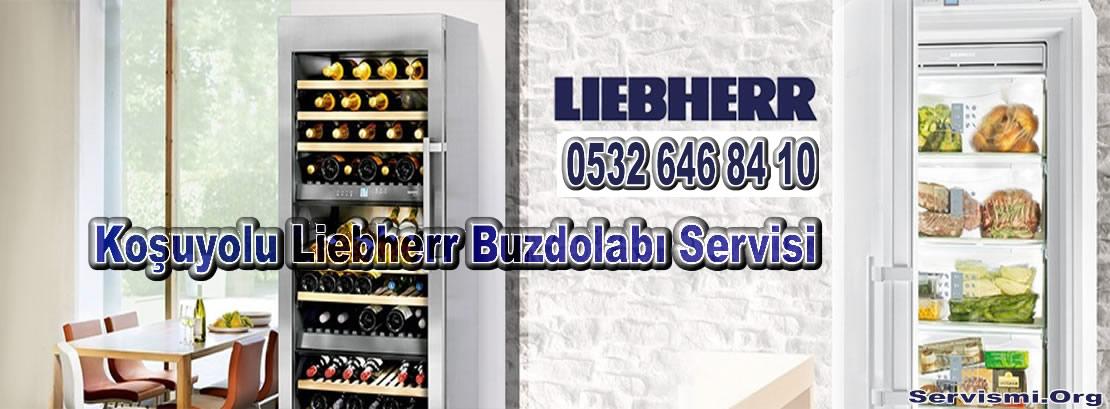 Koşuyolu Liebherr Servisi
