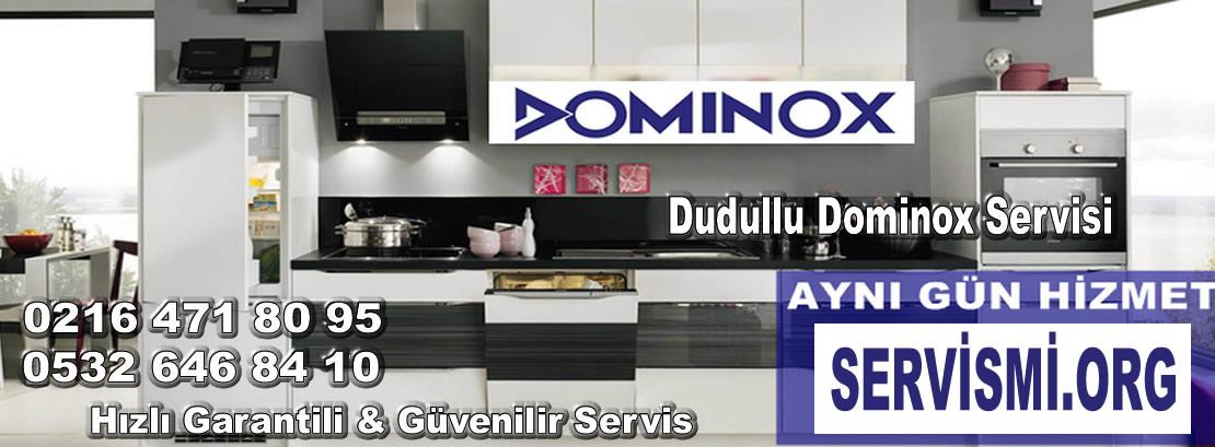Dudullu Dominox Servisi