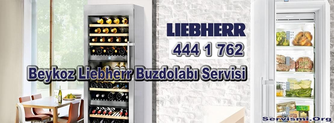 Beykoz Liebherr Servisi