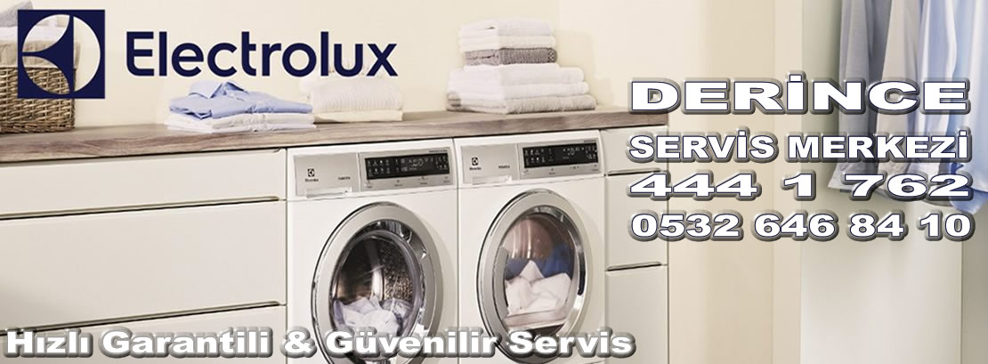 Derince Electrolux Servisi