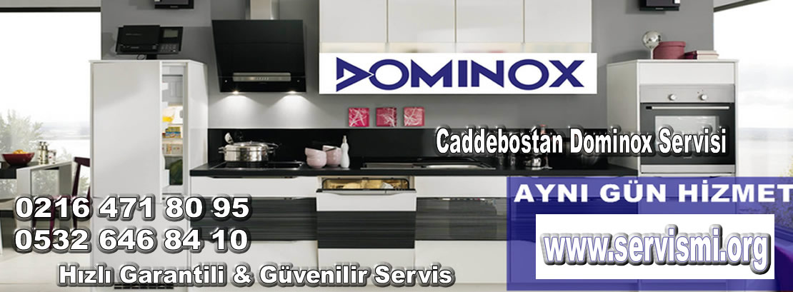 Caddebostan Dominox Servisi