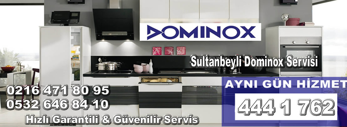 Sultanbeyli Dominox Servisi
