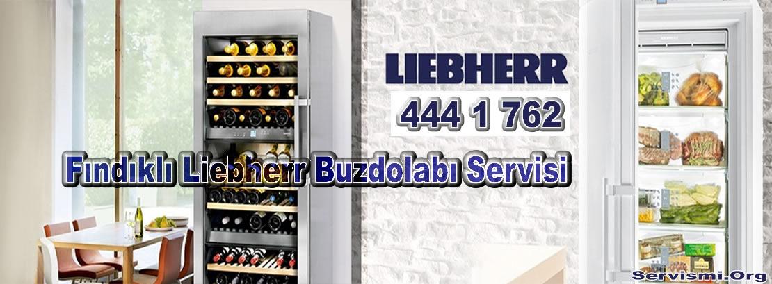 Fındıklı Liebherr Buzdolabı Servisi