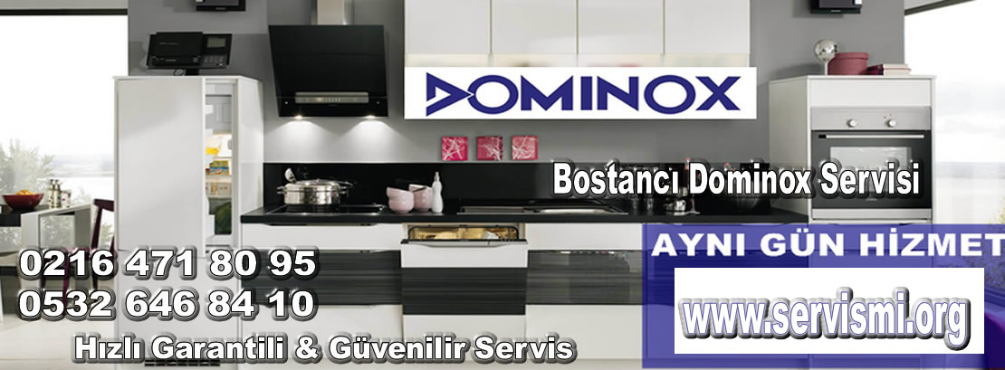 Bostancı Dominox Servisi